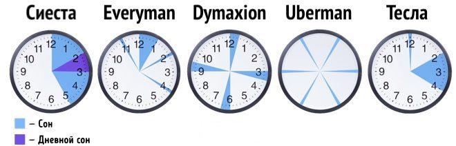 Режимы полифазного сна