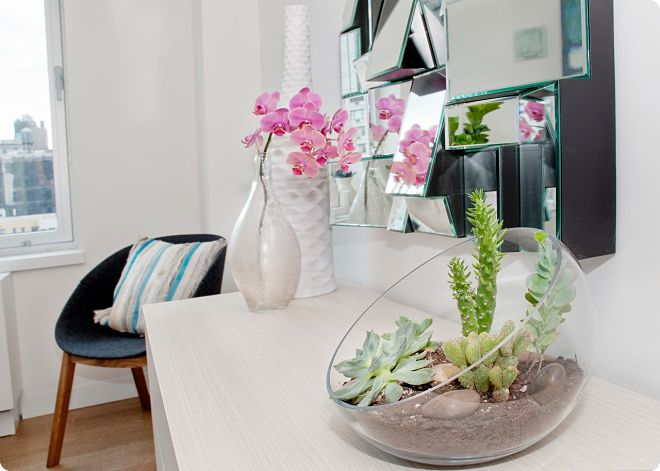фото-orhideya-v-rabochem-prostranstve