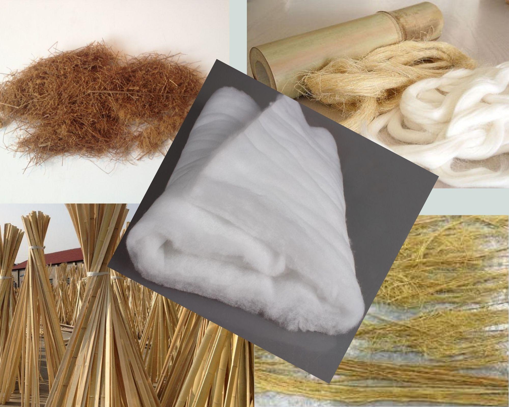Бамбук в разном виде