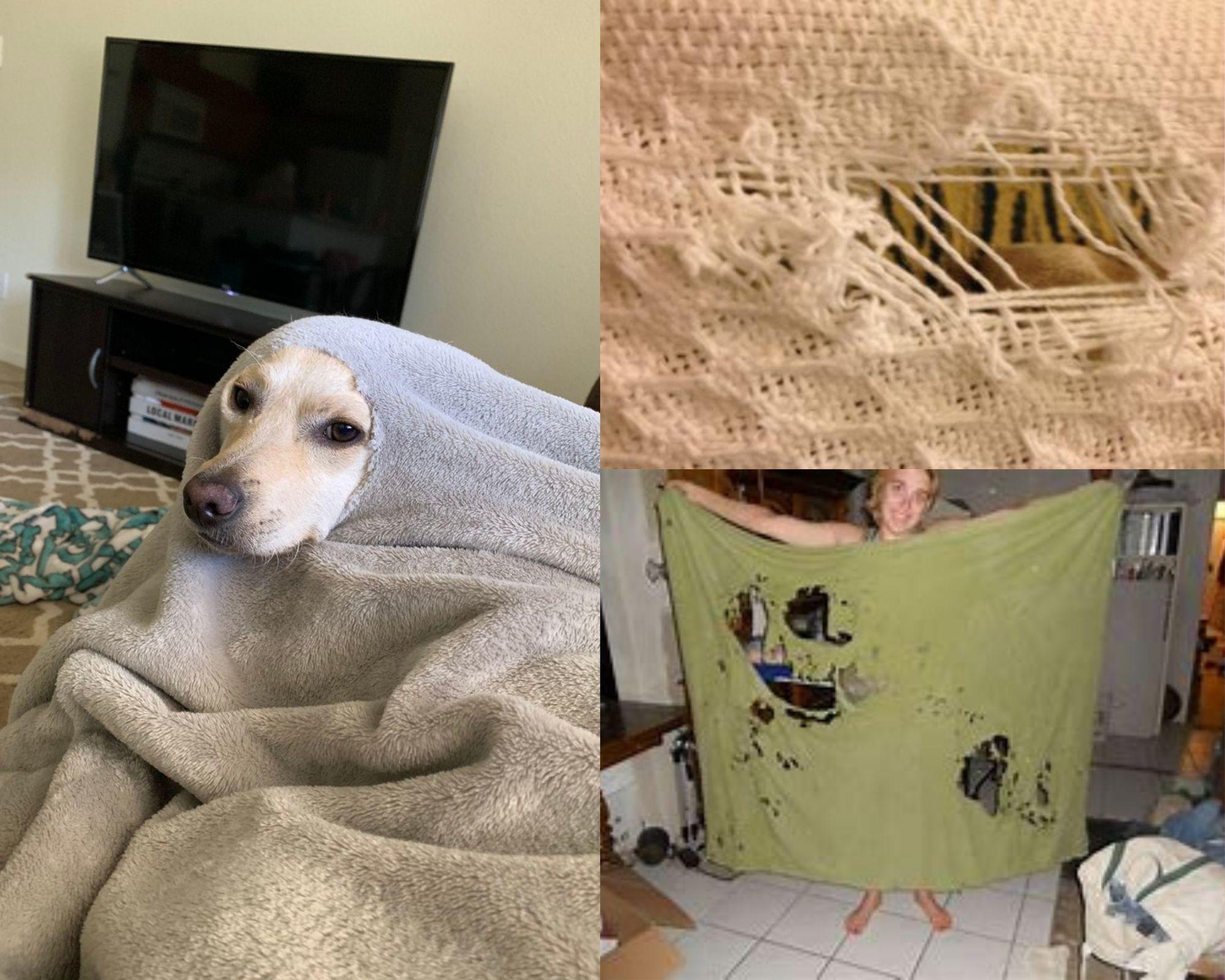 Одеяла с дырками